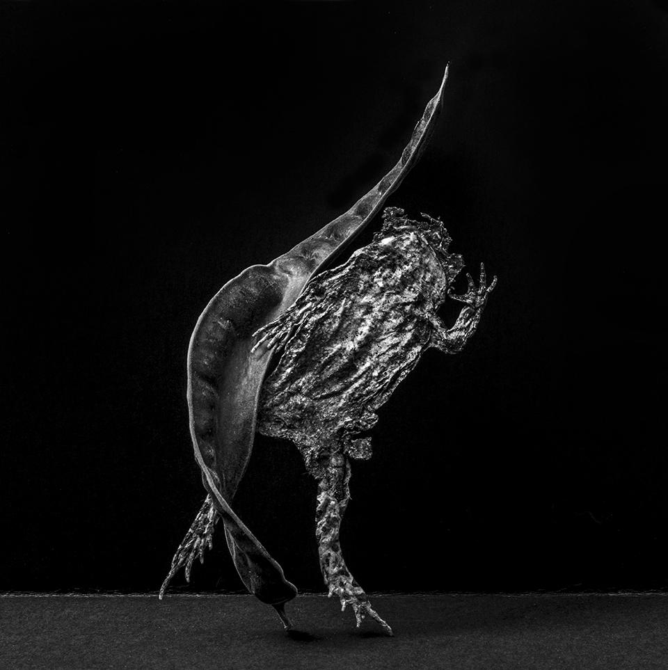 Josef Nadj - Mnémosyne - création 2018