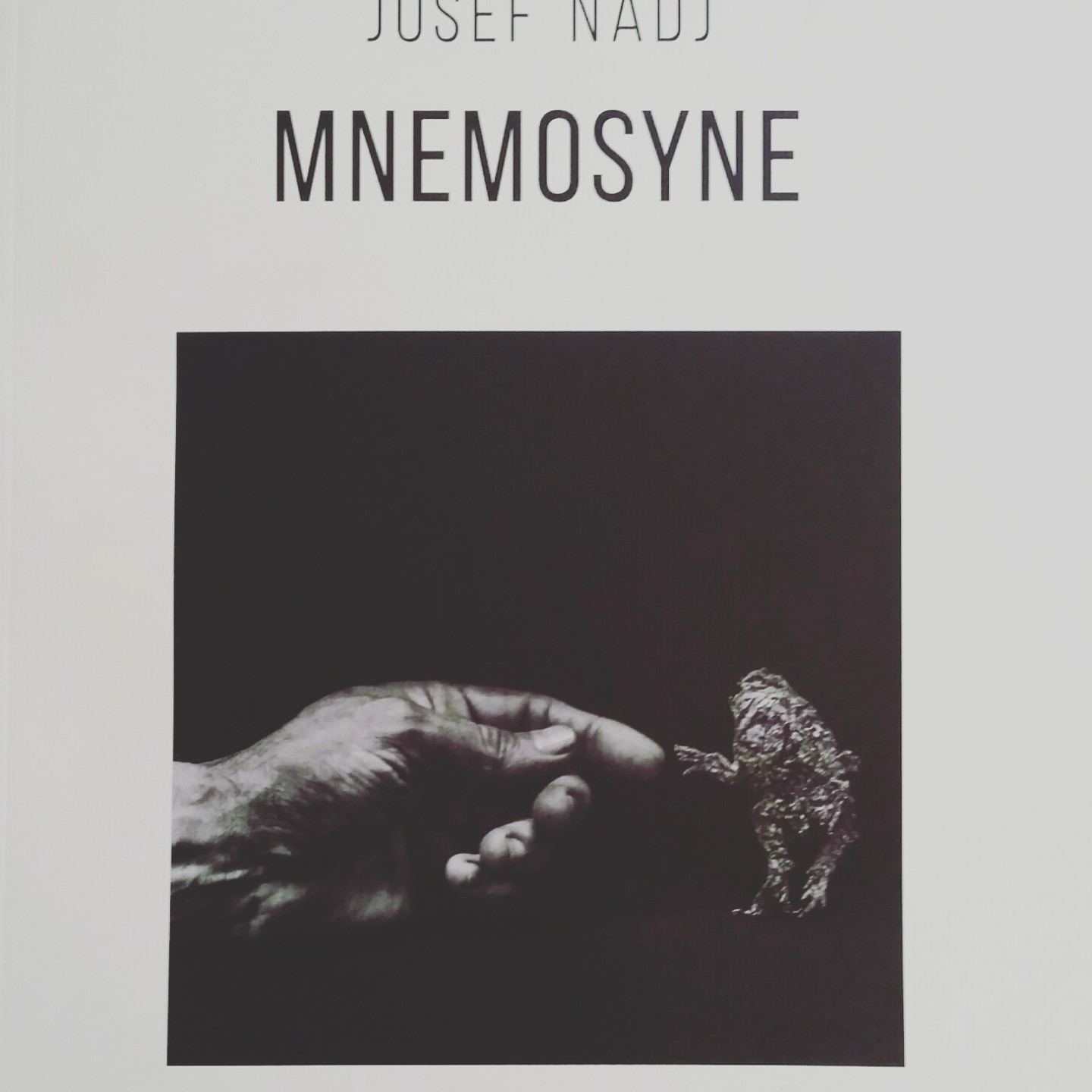 Mnémosyne - Josef Nadj catalogue