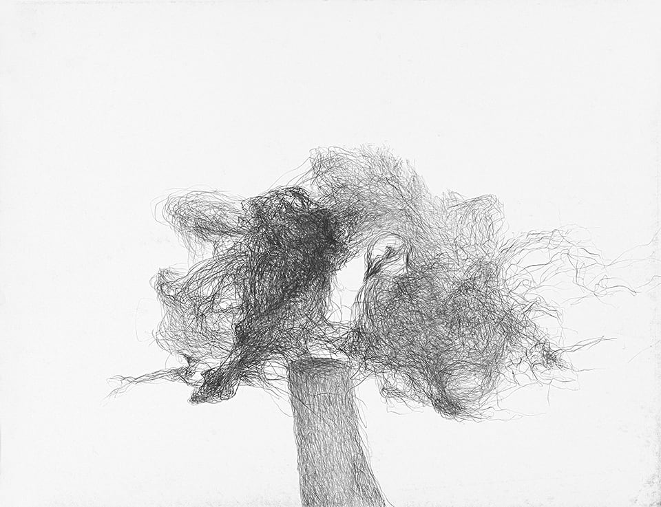 Josef Nadj - les corbeaux - 02